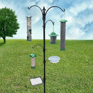 Gray Bunny Premium Bird Feeding Station Kit