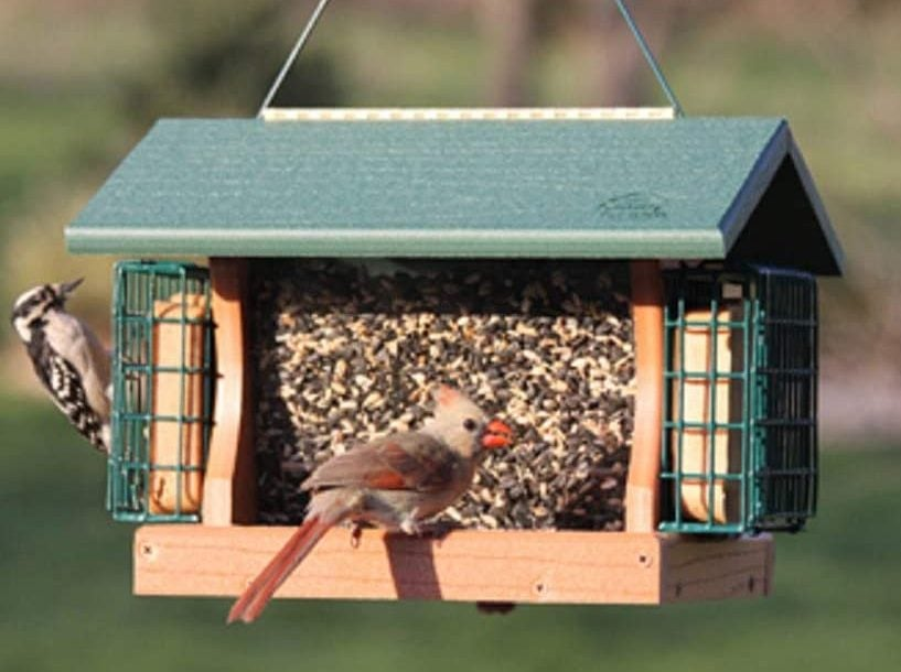 Woodlink Large Premier Bird Feeder
