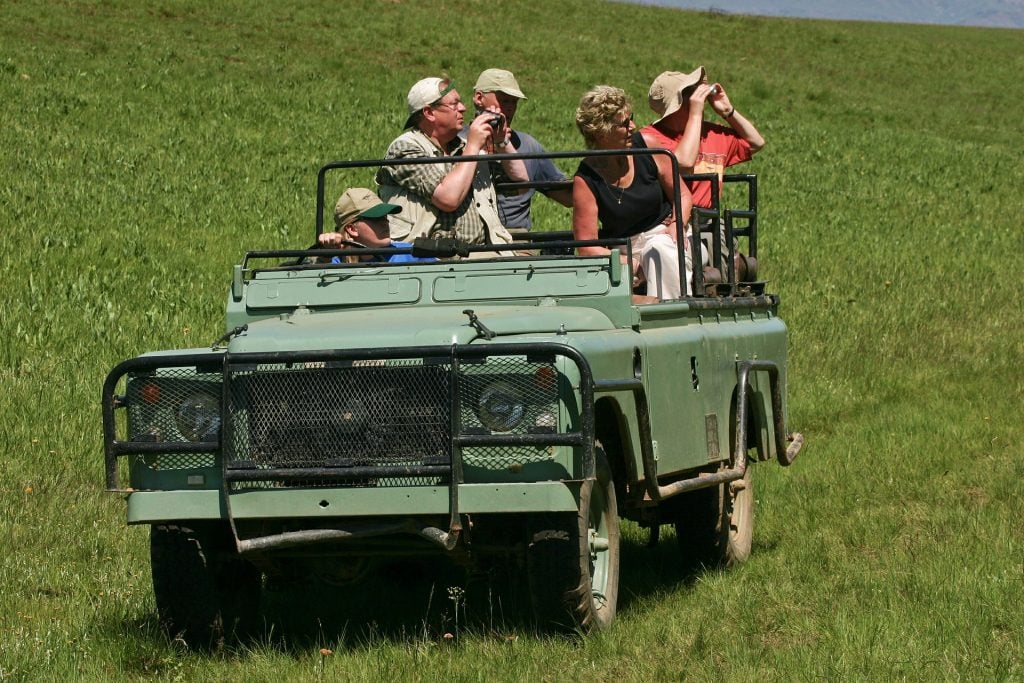 group of people on a safari trip